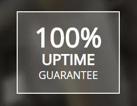 liquid web uptime guarantee
