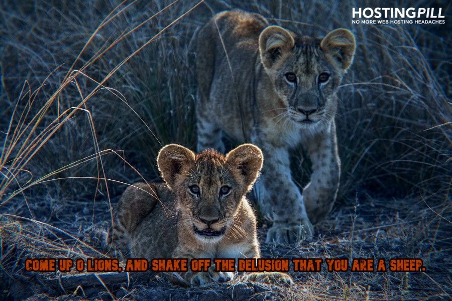 Come up O Lions, and shake off the delusion that you are a sheep - Swami Vivekananda