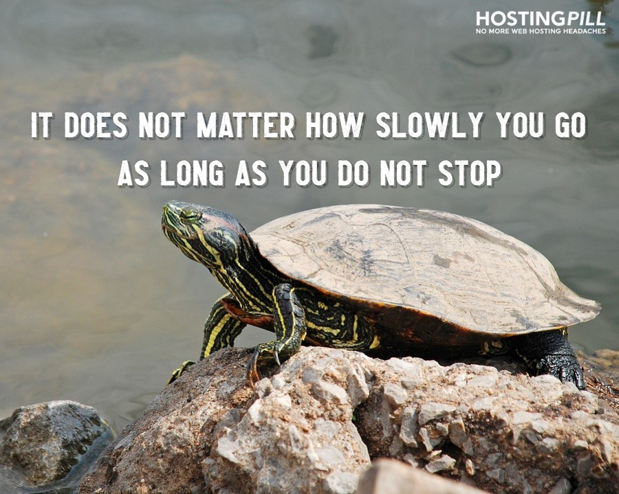 """It does not matter how slowly you go as long as you do not stop."""" –Confucius"""