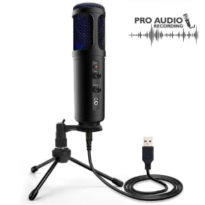Portable Pro Audio Mic