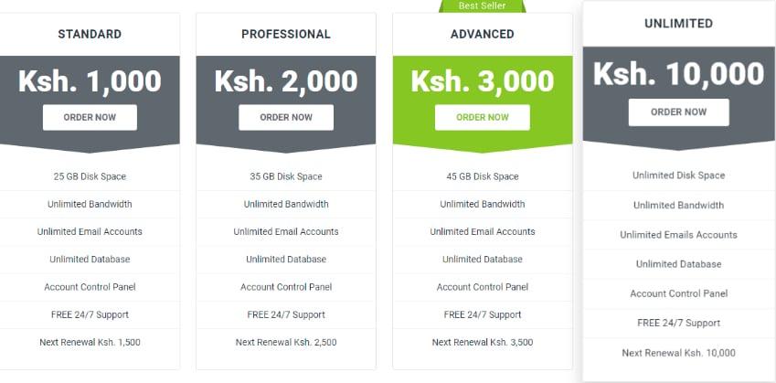 Web Design _ Domain Registration in Kenya _ Softnet Solutions Ltd